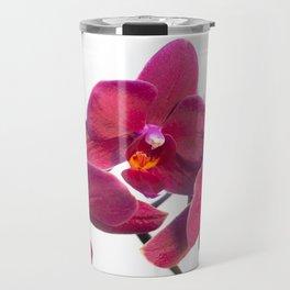 Orchid Flowers 02 Travel Mug