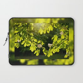 Flowering Aesculus horse chestnut foliage Laptop Sleeve
