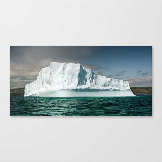 Northern Visitor Canvas Print