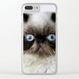 Funny Cat Clear iPhone Case