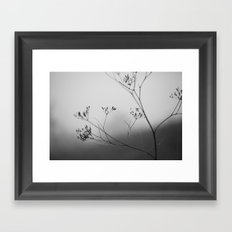 autumn fog Framed Art Print