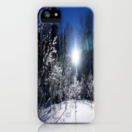 Icy Forest  iPhone Case