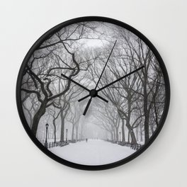 Central Park during Blizzard of 2015 Wall Clock