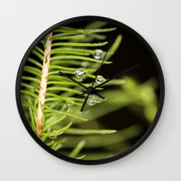 Spruce branch with drops Wall Clock