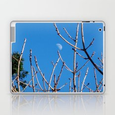 Moon on a Stick II Laptop & iPad Skin
