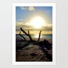 Desert Island Driftwood Sunset Art Print