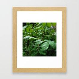 Receiving Framed Art Print