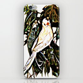 Bird watching iPhone Skin