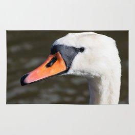 Mute swan landscape Rug