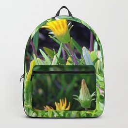 Ice Plant Backpack