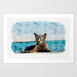 Aquarelle sketch art. Cat on Cadiz, Spain Art Print