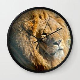 Lazing Lion  Wall Clock