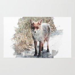 How I met a Fox Rug