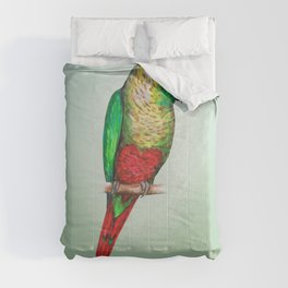 Conure with a heart on its belly Comforters