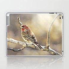Rosy Little Finch Laptop & iPad Skin
