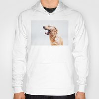 golden retriever Hoodies featuring Golden Retriever Dog Yawning by Limitless Design