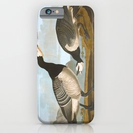 Barnacle Goose iPhone Case