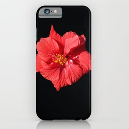 Red Hibicus DPG150523 iPhone Case