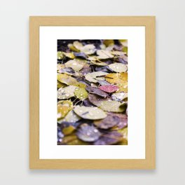 Fallen Leaves Framed Art Print