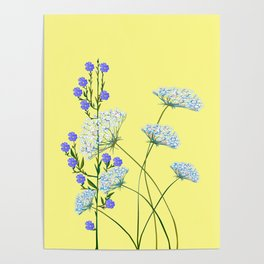 My Kentucky Wild Flowers, Queen Anne Lace and Flax Poster