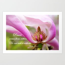 Pink Magnolia - Peace From Within - Buddha Quote Art Print