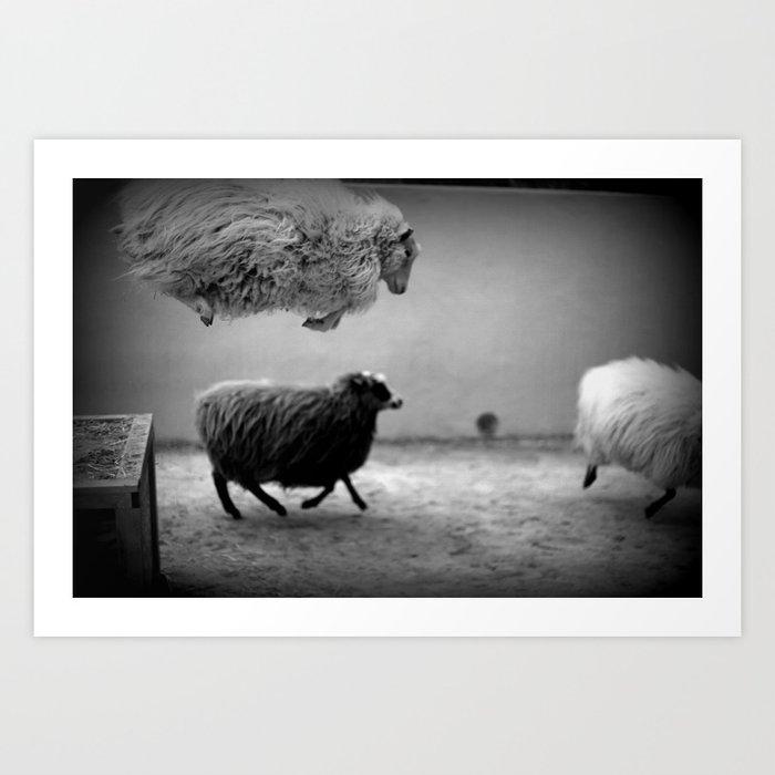happy sheeps Art Print