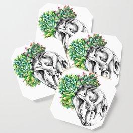 Rock Rose Cat Skull Coaster