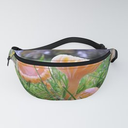 SMALL FUNGI GROUP Fanny Pack
