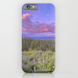 Violet Sunset iPhone Case
