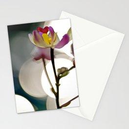 Spot Light Flower Stationery Cards