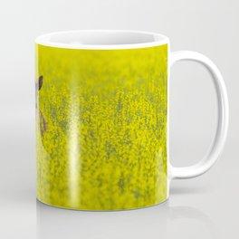 Buck in Canola Coffee Mug