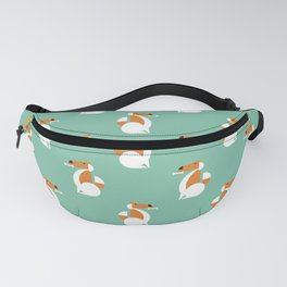 Chewy Fanny Pack