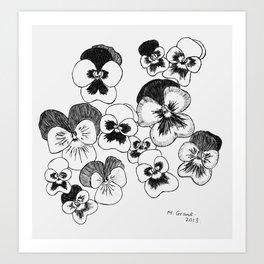 pansies black and white Art Print
