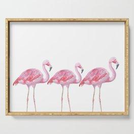 Flamingo - Pink Bird - Animal On White Background Serving Tray