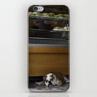 english bulldog iPhone & iPod Skins featuring English Bulldog by sovichka