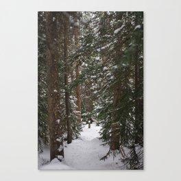 Where We Found Narnia Canvas Print