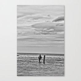 Coast - Gender Shore Canvas Print