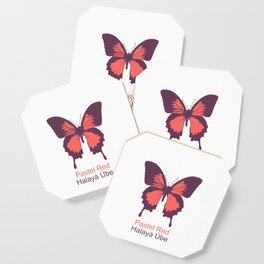 Ulysses Butterfly 3 Coaster