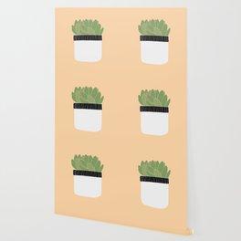 Succulent 01 Wallpaper