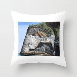 Elephant Island Throw Pillow