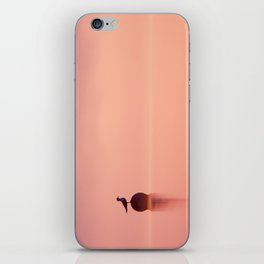 Empty Spaces (Gull atunrise) iPhone Skin