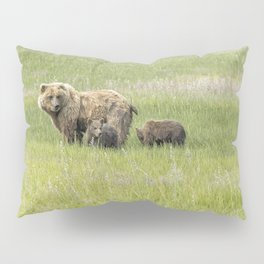 Mother Brown Bear With Her Two Cubs, No. 1 Pillow Sham