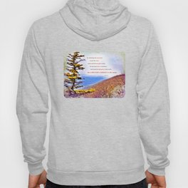 High Places Hoody