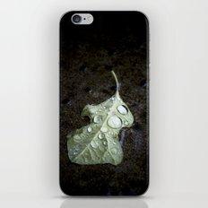 autumn rain. iPhone & iPod Skin