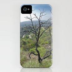 Mountain Tree iPhone (4, 4s) Slim Case