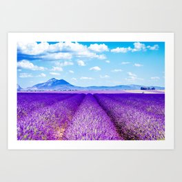 Passing Provence Art Print