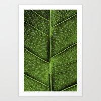 leaf Art Prints featuring LEAF by Ylenia Pizzetti
