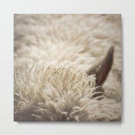 Woolly Metal Print