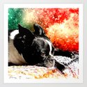 Boston Terrier (Jake) by north10creations