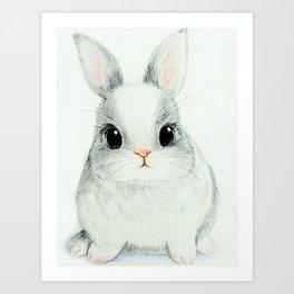 cute little rabbit Art Print